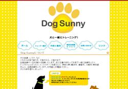 DogSunny