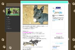 Dog Training GELDOLF