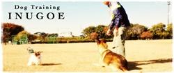 Dog Training INUGOE