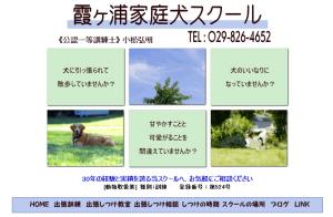 霞ヶ浦家庭犬スクール