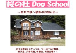 桜の杜DogSchool