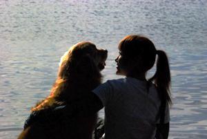 犬の家庭教師 ワンドゥ